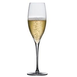 כוס לשמפנייה