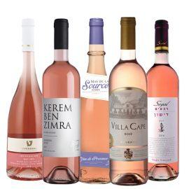 חבילת יינות מספר 4